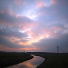 River Sunset by ienemien