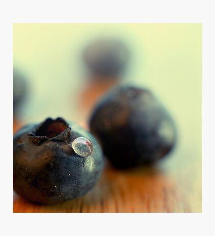 Blueberry portrait Photographic Print