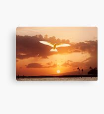 6:57 PM Hawaii Time Canvas Print