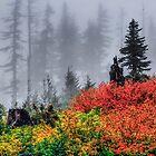 Herbstfarben, Böhmensattel, Oregon Cascades. von Charles & Patricia   Harkins ~ Picture Oregon