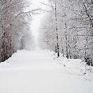 Long Walk In The Cold by aljen01