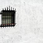 """""""Nor iron bars a cage"""" by Paul Pasco"""