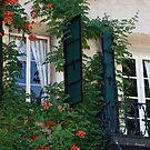 Window and Door of Murphys by Barbara  Brown