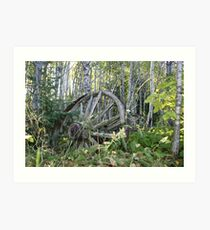 Old Wagon Wheels Art Print