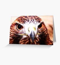 Andi- The Golden Eagle Greeting Card