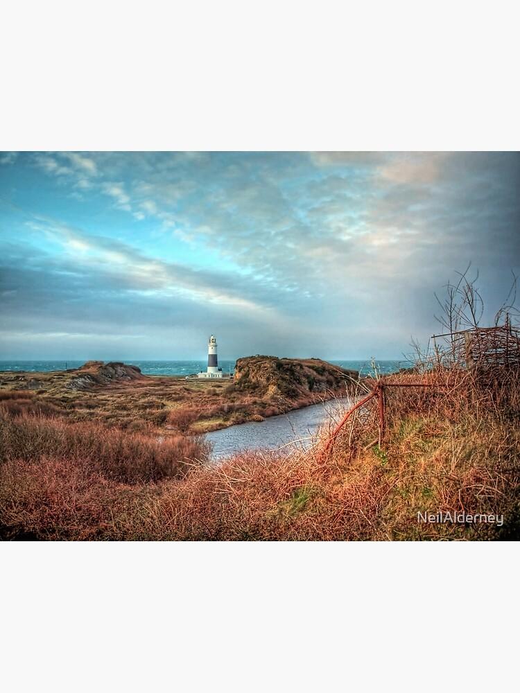 Alderney's lighthouse by NeilAlderney