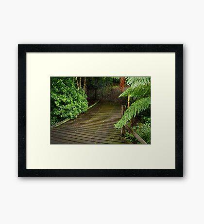 Wooden Bridge, Stringers Creek,Walhalla Framed Print
