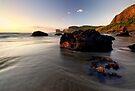 Maori Bay, Muriwai by Michael Treloar