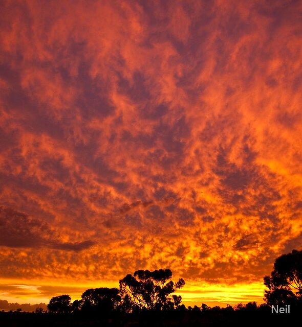 Fire in The Sky by Neil