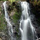 Liffey Falls by Sprinkla