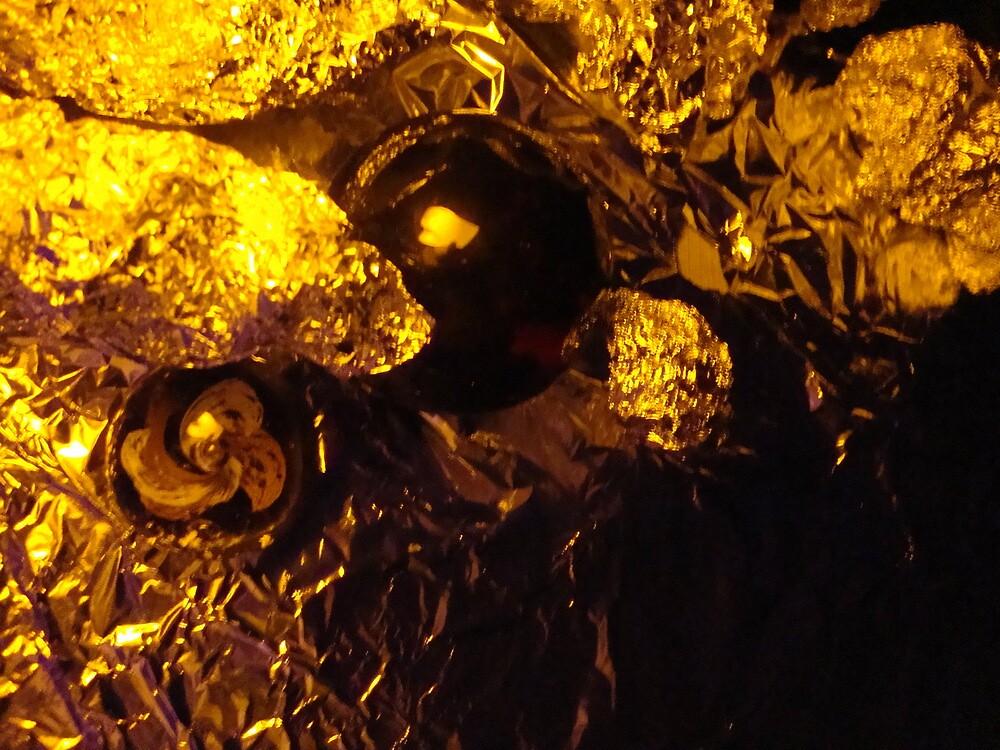 california gold rush by leonie7
