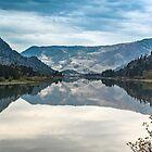 Flathead River Reflections by Bryan D. Spellman