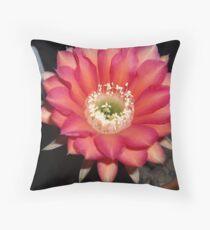 Echinopsis Cactus Bloom Throw Pillow