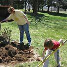 starting a new garden by Jeannie Matthews