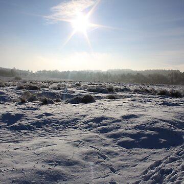 Stunning sun snow day by derbyshireduck