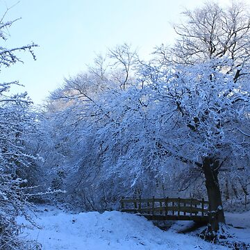 Atmospheric snowy countryside by derbyshireduck