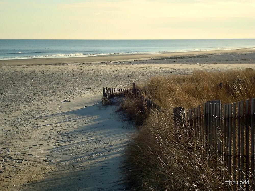 DESERTED BEACH  - Calendar Image    ^ by ctheworld