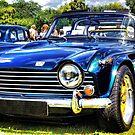 Triumph TR5 by Mick Smith