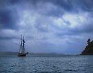 In Bay of Islands by Yukondick
