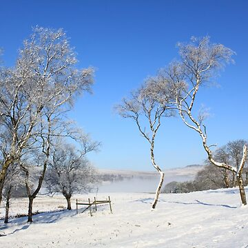 Blue skies and snow by derbyshireduck