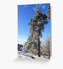 Trees of Longshaw Greeting Card