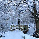 snowy bridge at Longshaw by derbyshireduck