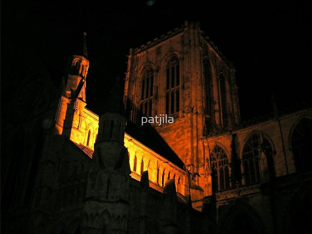 Symphony of dark and light York Minster by patjila