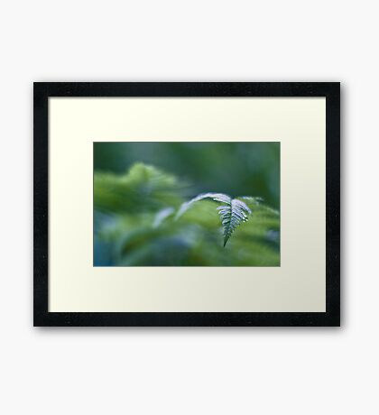 The green tide rolling in Framed Print