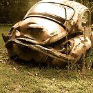 Used & Abused Bug by vschmidt