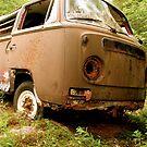 Used & Abused VW Bus by vschmidt