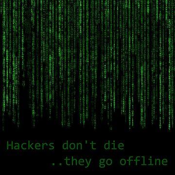 Hackers by windu