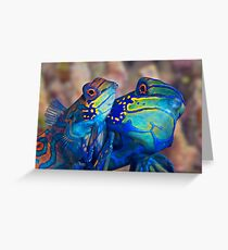 Mating Mandarins Greeting Card