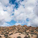 desert sky by bellehibou
