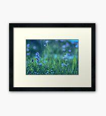 Blue Spring Flowers Framed Print
