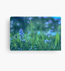 Blue Spring Flowers Canvas Print