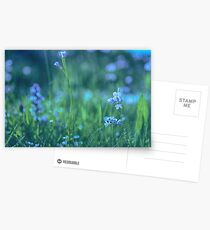 Blue Spring Flowers Postcards