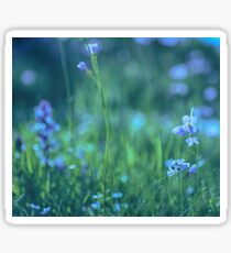 Blue Spring Flowers Sticker