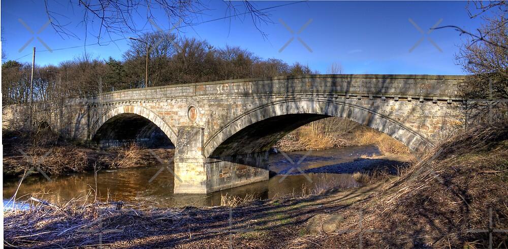 The New Bridge by Tom Gomez
