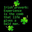 Irish Proverb: Experience Is the Comb by LaRoach