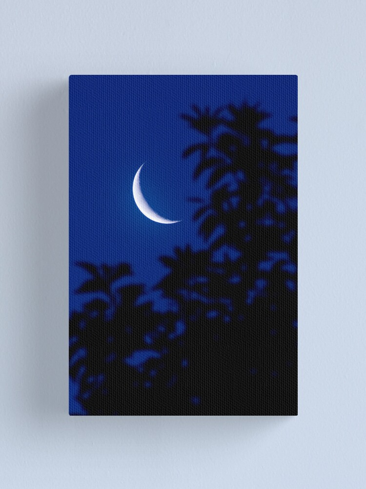 Alternate view of New Moon Canvas Print