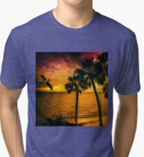 New Year in Florida Tri-blend T-Shirt