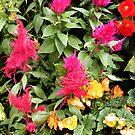 Flowers 1 by Arkani