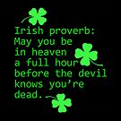 Irish Proverb:  by LaRoach