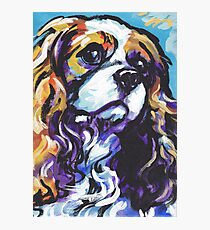 cavalier king charles spaniel Dog Bright colorful pop dog art Photographic Print