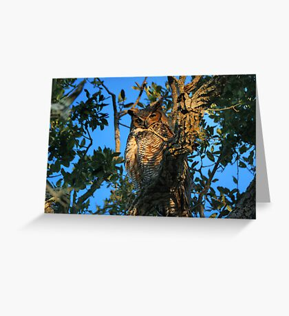 On Guard Greeting Card