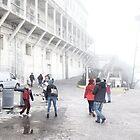 Willkommen in Alcatraz von Margaret Stevens
