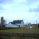 Clinton County Farm by debbiedoda