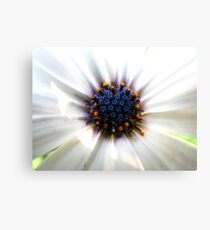Flowers in Flower Canvas Print