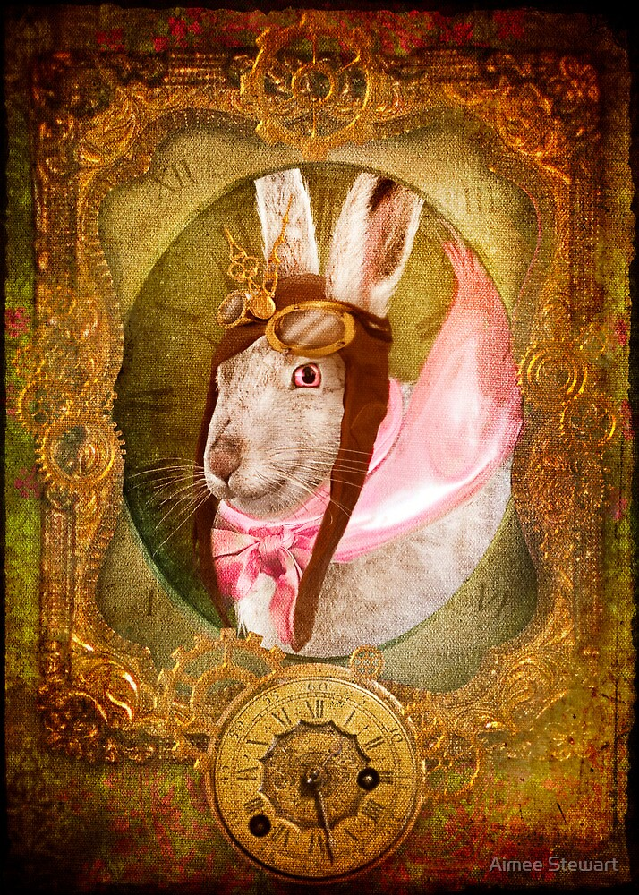 The White Rabbit by Aimee Stewart