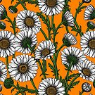 Daisies on orange by Katerina Kirilova